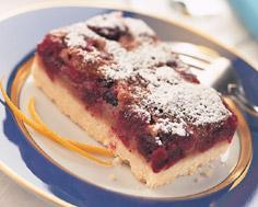 Cranberry Cake Squares